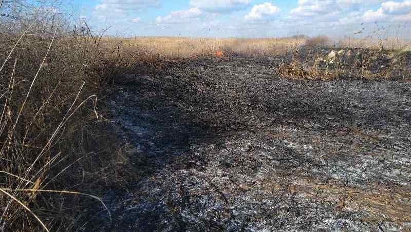 Спасатели Аккермана оперативно потушили пожар в камышах, горевших вблизи жилых домов