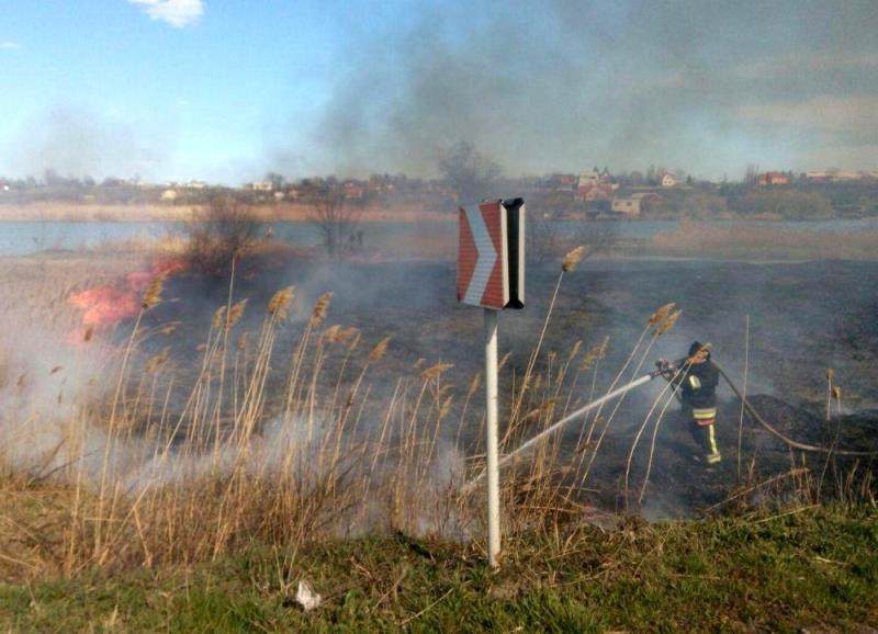 На территории Нижнеднестровского нацпарка, вдоль трассы Одесса-Рени, полыхают камыши. Пламенем охвачено более 7 га