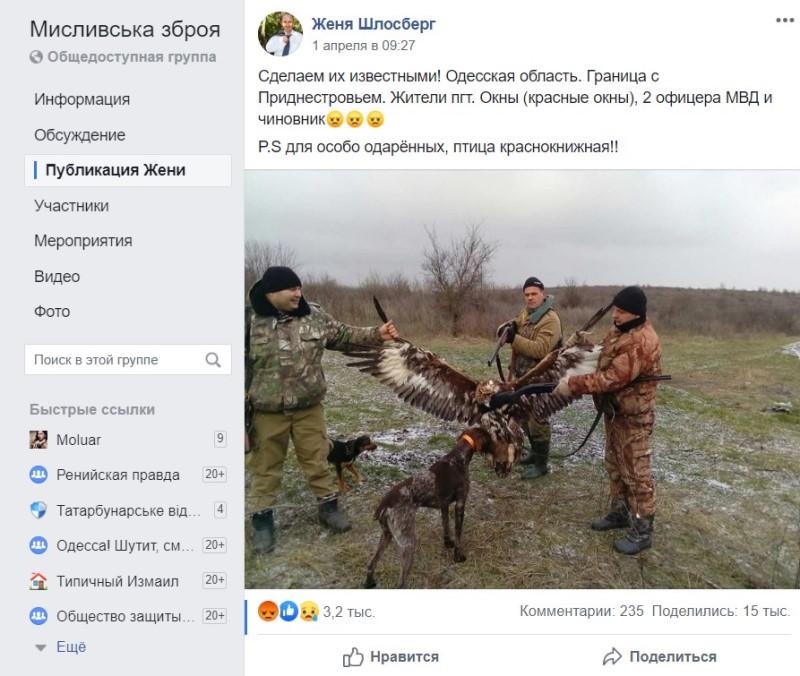 В Одесской области полицейские на охоте убили краснокнижного беркута - руководство полиции открыло служебное расследование