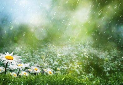 Мокнем, сохнем и жаримся: какая погода ожидает украинцев этим летом — синоптики дали прогноз