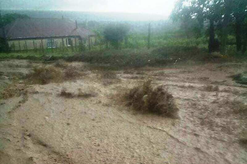 В результате сильных ливней Рени и несколько сёл района затопили болотные реки