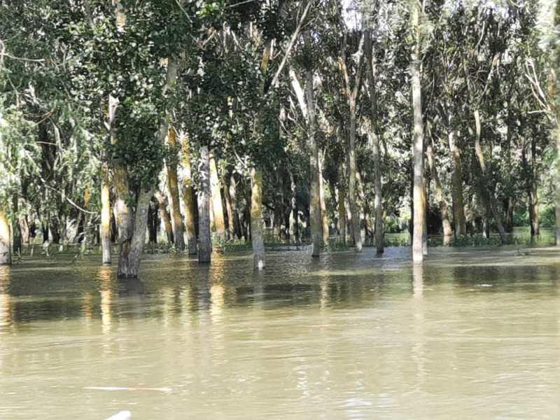 Уровень воды в Днестре растет: на низких участках трассы Одесса-Рени вода поднялась к полотну дороги, возможно затопление
