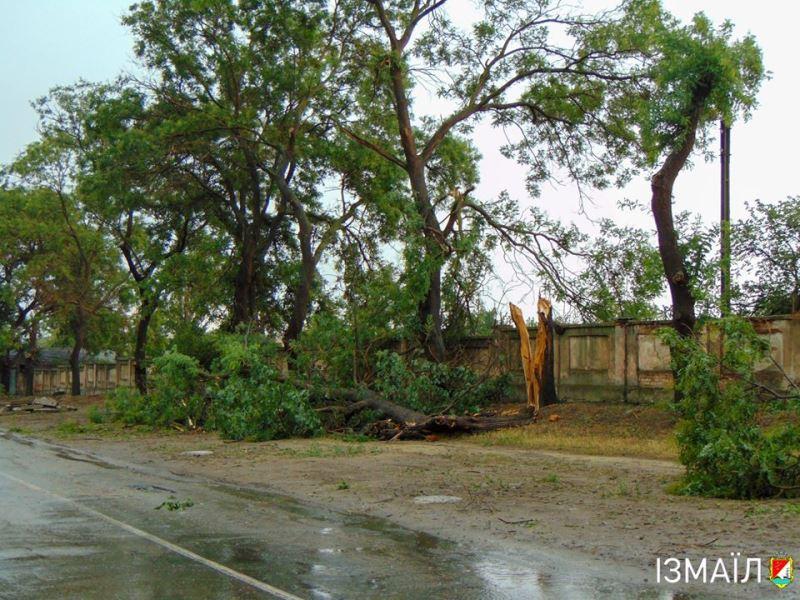 Около сотни поваленных деревьев и столько же повреждений линий электропередач - Измаил отходит после удара стихии