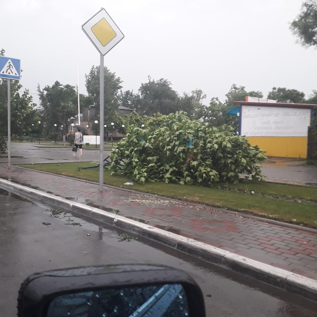 Побитые окна и автомобили, поваленные деревья: непогода, обрушившаяся на Бессарабию, наделала немало бед