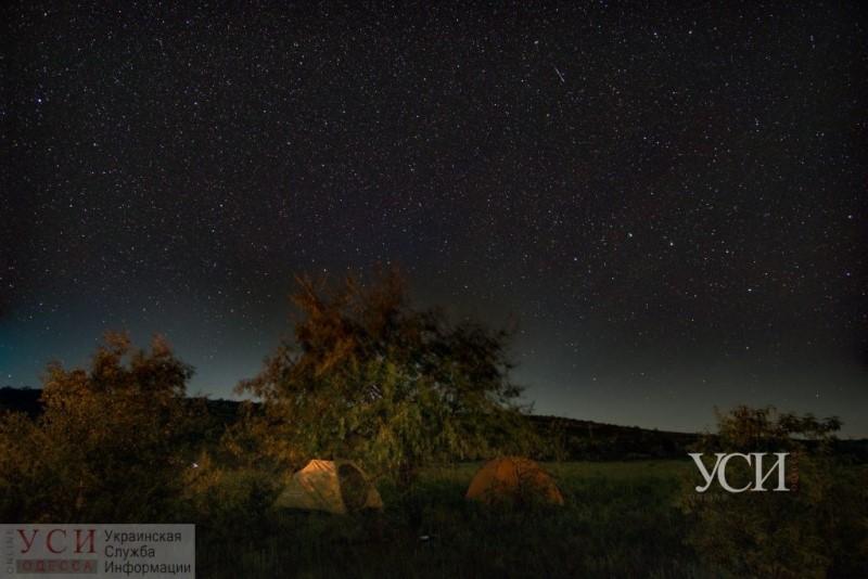 Поток Персеиды: фотограф запечатлел невероятный вид звездопада в Одесской области