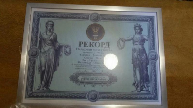 Козёл из Измаильского района попал в Книгу рекордов Украины