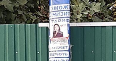 День тишины в Бессарабии: политическая реклама на улицах и в социальных сетях, а также скупка голосов в Килийском районе