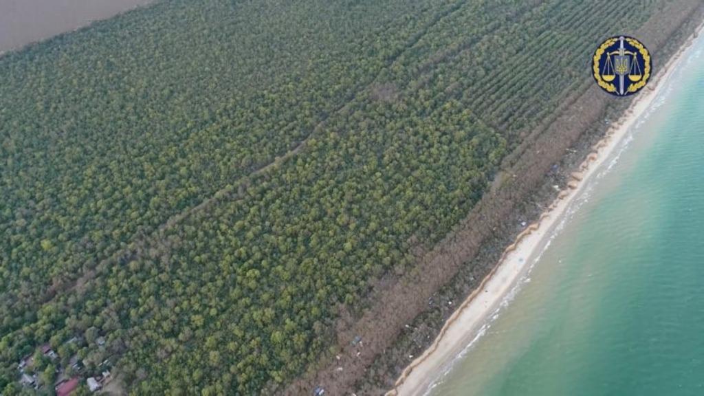 Территориально - в нацпарке, по бумагам - в Саратском лесничестве: почти 30 га урочища Лебедёвка требуют вернуть государству