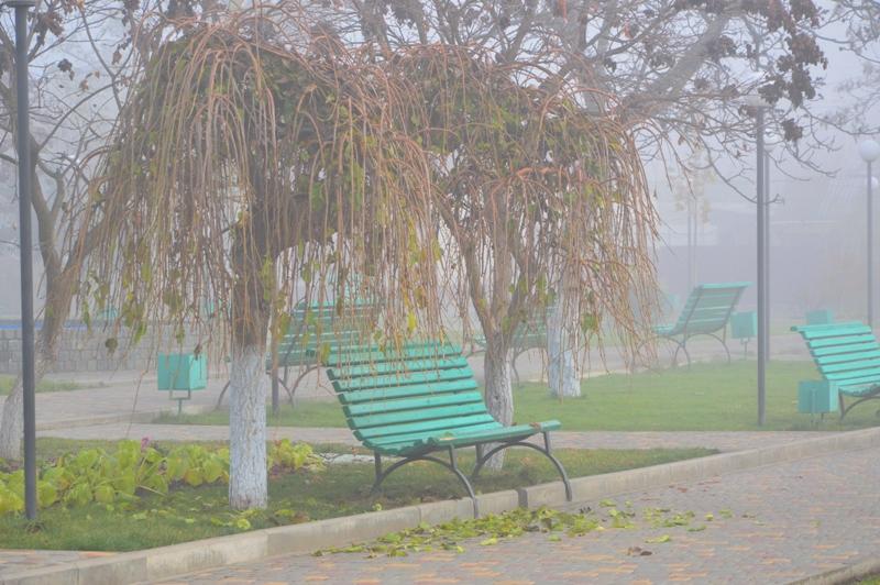 Красивый, густой туман накрыл утреннюю Килию (фоторепортаж)