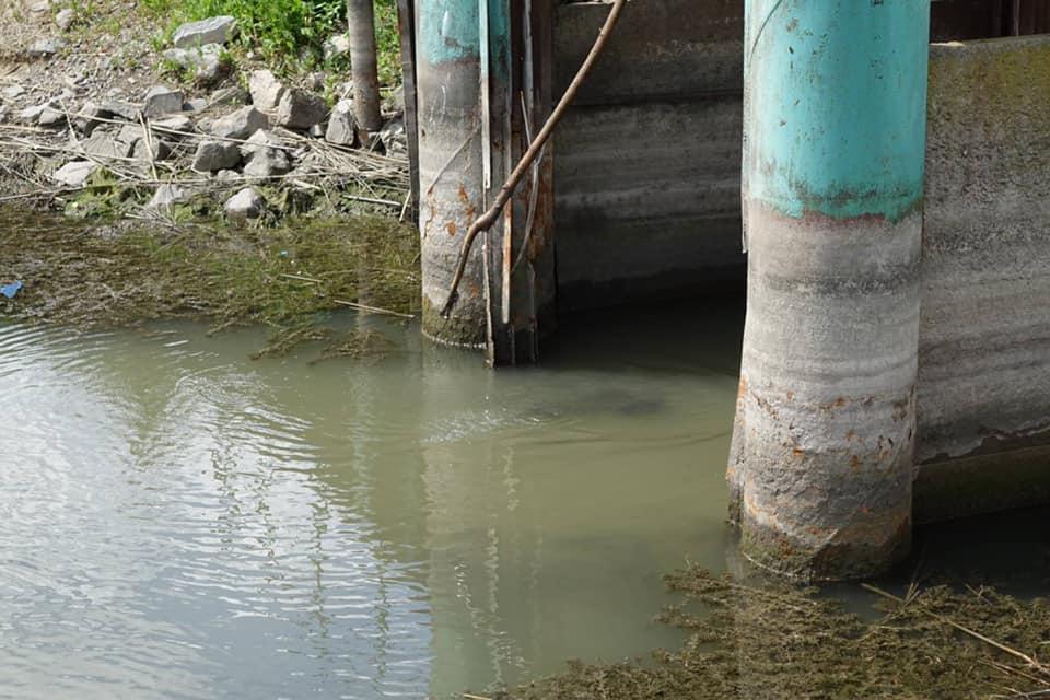 Новый уровень Дуная снял проблемы экологической катастрофы и водоснабжения в Болградском районе