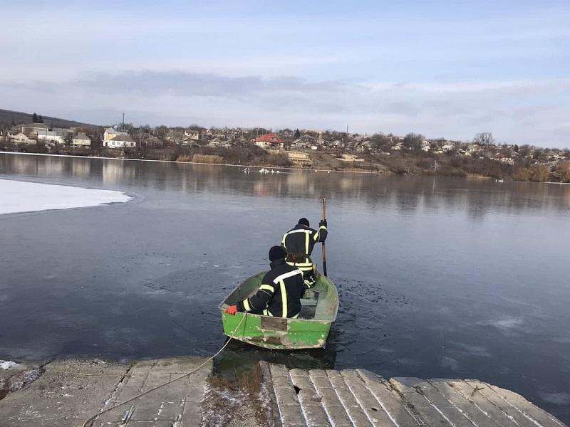 В Одесской области спасатели освободили лебедей из ледяного плена