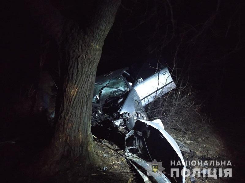 Слетел в кювет и врезался в дерево: в Одесской области в результате ДТП погиб водитель иномарки