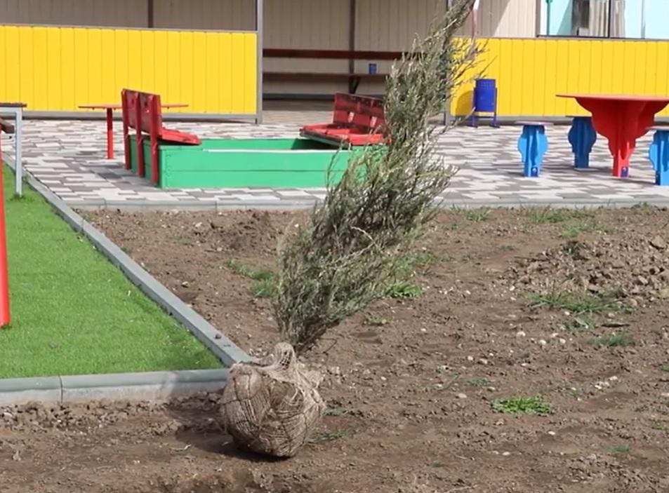 """В Измаиле на территории обновленного детсада """"Светлячок"""" высадили 138 деревьев"""