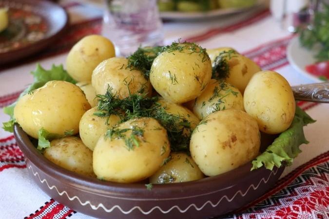 Почему египетский молодой картофель продается вдвое дешевле, чем украинский: 10 причин