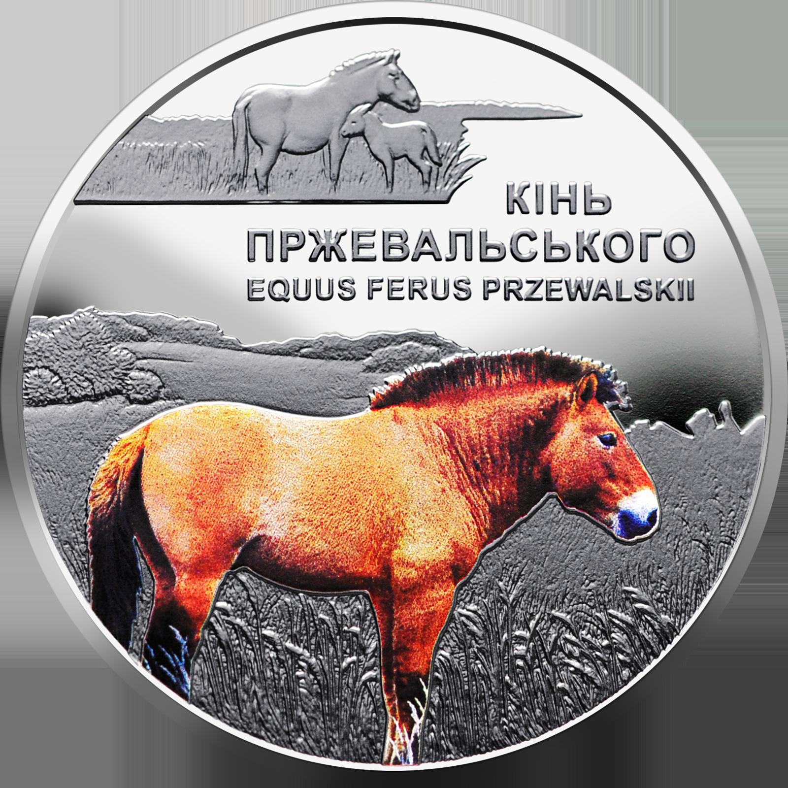 Сегодня НБУ вводит в оборот новую монету номиналом 5 грн