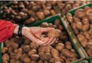 Картофель гниет на полях: эксперты рассказали, что будет с ценами