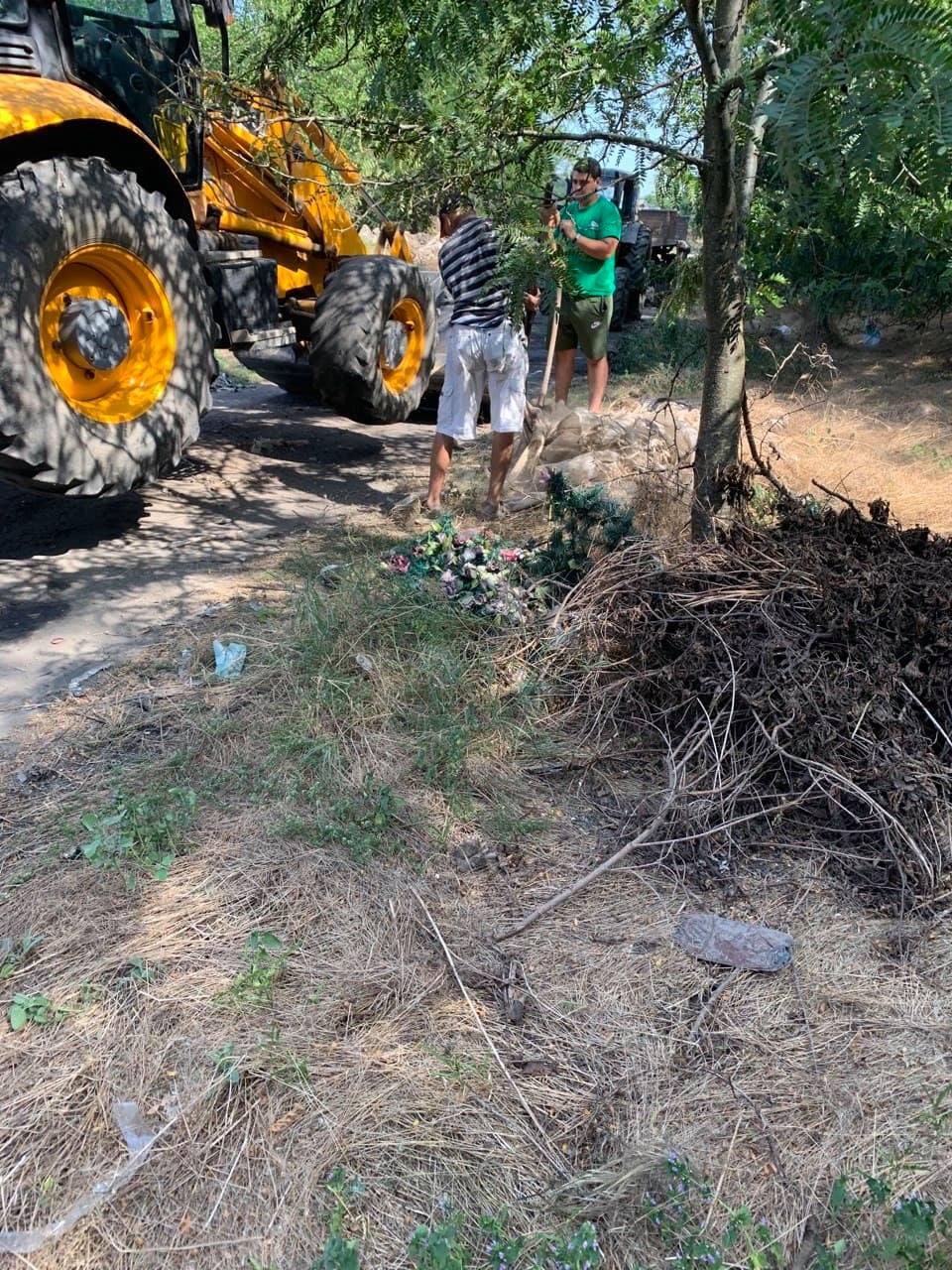 Два села объединили усилия для ликвидации мусорной свалки на территории Барановского леса под Измаилом