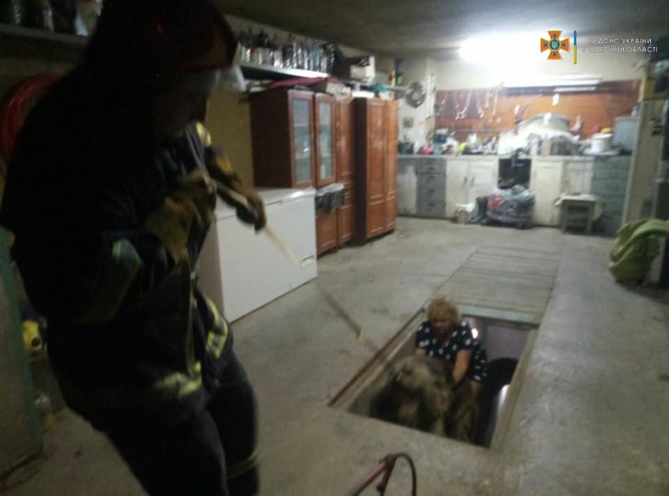 В Измаиле спасатели в 4 утра вызволяли собаку, упавшую в подвал
