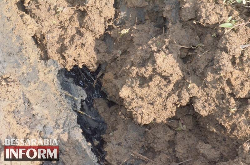 Деньги не пахнут: база отдыха в Курортном сливает нечистоты в Будакский лиман. Экологи и местные жители забили тревогу