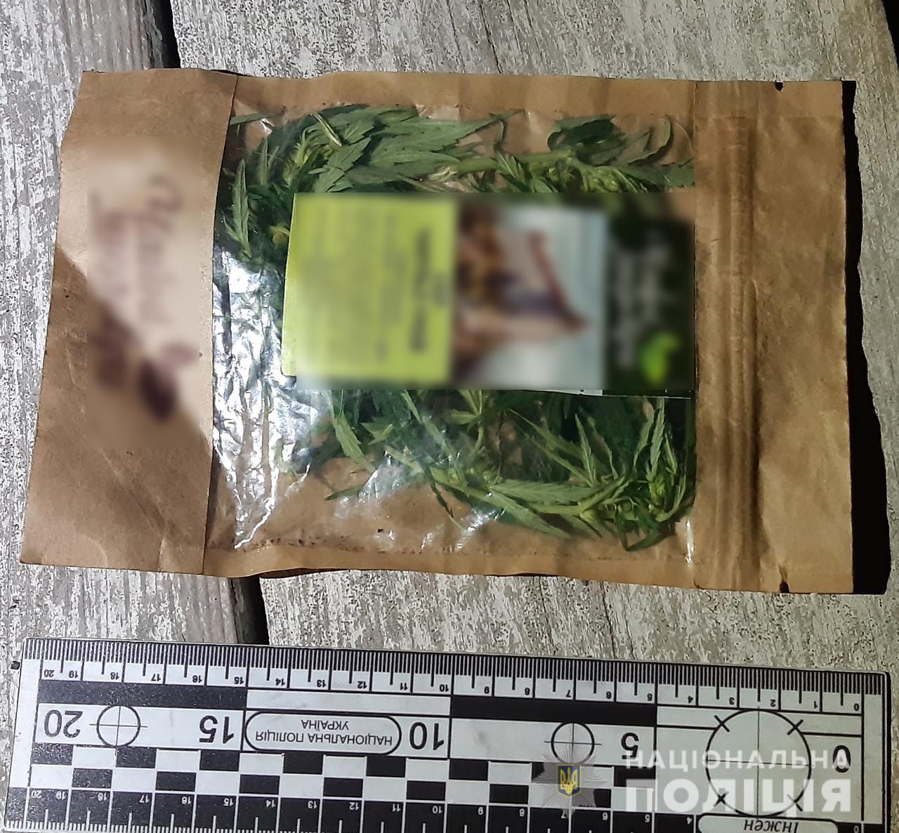 Каннабис - в карманах и на огородах: в Белгород-Днестровском районе продолжают выявлять наркопреступления