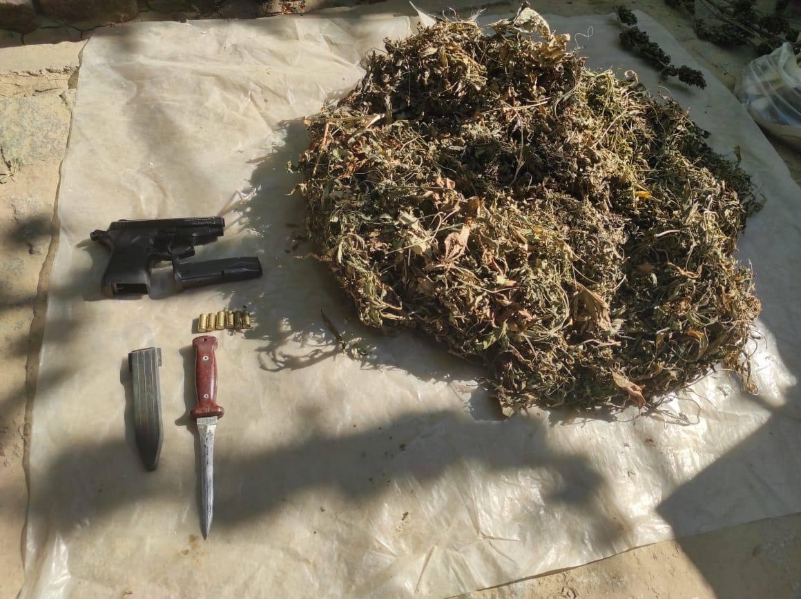В Измаильском районе во время совместного рейда пограничники и правоохранители изъяли наркотики и оружие на 7,5 млн гривен