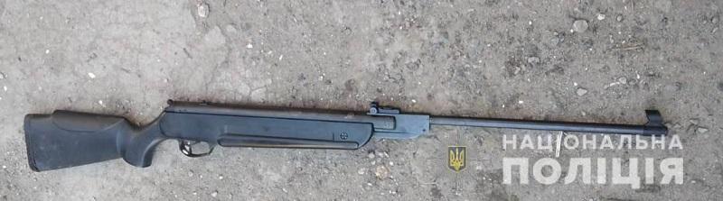 Житель Белгород-Днестровского района застрелил соседскую собаку из пневматической винтовки