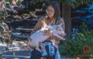 Купила скот, чтобы спасти от смерти: прогулка с поросенком и теленком на улицах Днепра закончилась скандалом