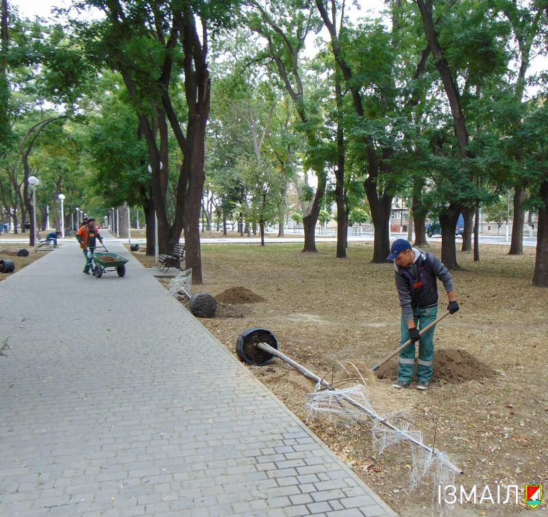 В парках и скверах Измаила проводится осенняя высадка деревьев