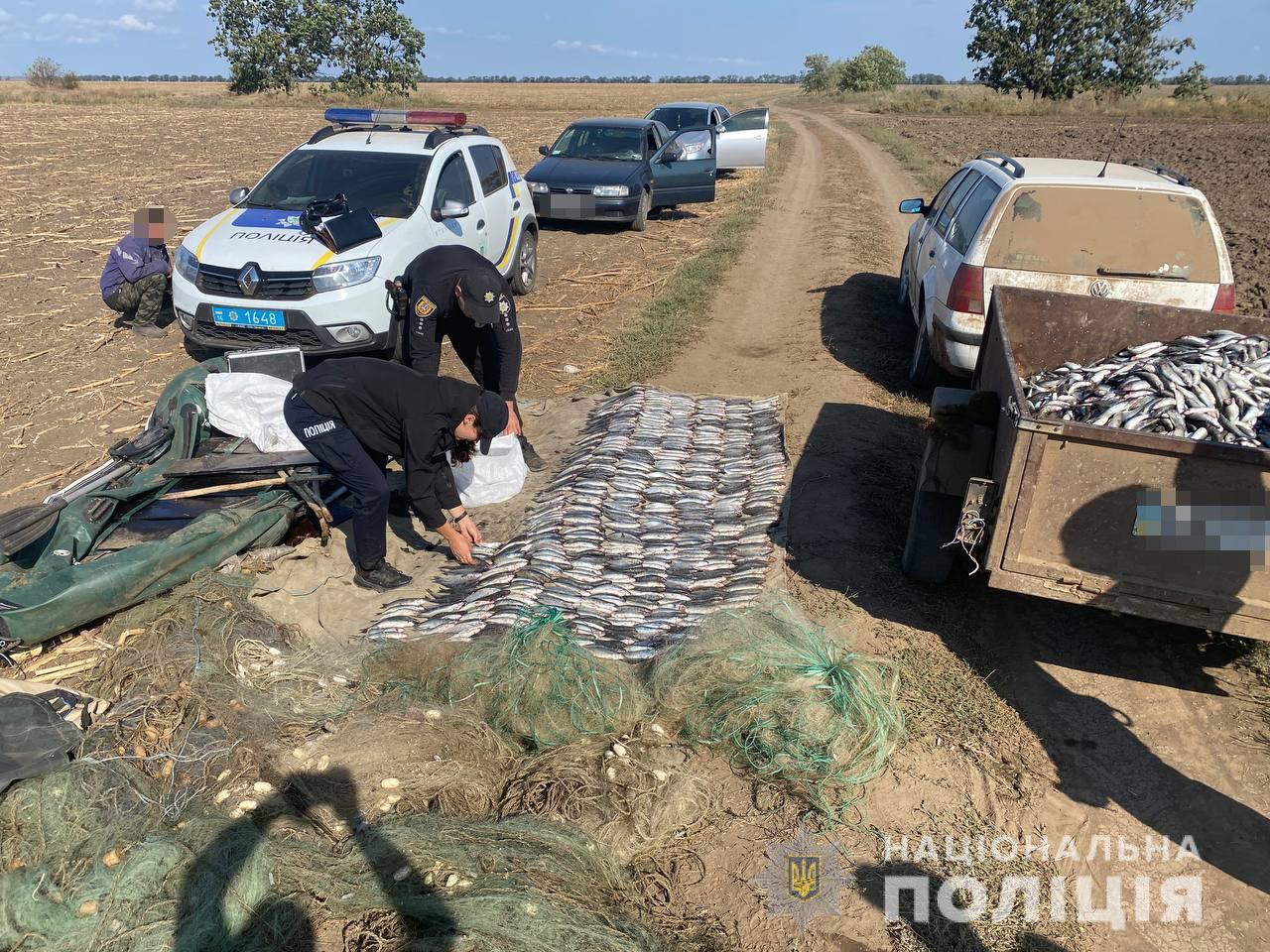 В Тузловских лиманах задержали браконьеров с уловом кефали почти на 2 млн гривен