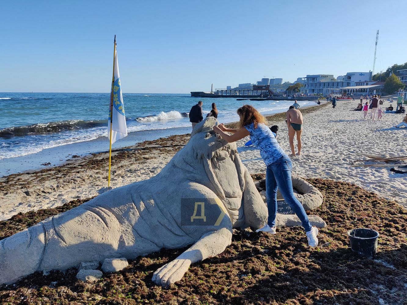 В Одессе на центральном пляже появился самый большой морж в Украине